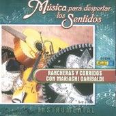 Música para Despertar los Sentidos - Rancheras y Corridos by Mariachi Garibaldi