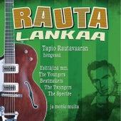 Rautalankaa - Tapio Rautavaaran Hengessä by Various Artists