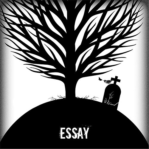 Life by Essay