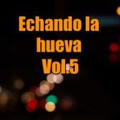 Echando la mueva, Vol.5 by Various Artists