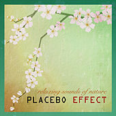 Plecebo Effect Sounds of Nature White Noise for Mindfulness Meditation and Relaxation Sound Therapy by Sounds of Nature White Noise for Mindfulness Meditation and Relaxation BLOCKED