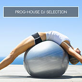 Prog-House DJ Selection by Various Artists