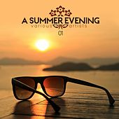 A Summer Evening Vol. 01 by Various Artists