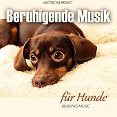 Beruhigende Musik für Hunde (Relaxing Music) by Electric Air Project