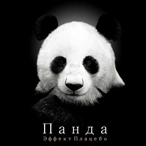 Placebo Effect by Panda