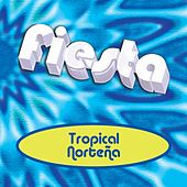 Fiesta Tropical Norteña by Various Artists
