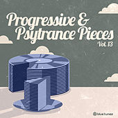 Progressive & Psytrance Pieces, Vol. 13 by Various Artists
