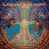 The Face of Love: A Guided Spirit Journey by Liquid Bloom