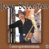 Lodo Que Sabe Brillar by Joan Sebastian