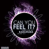 Can You Feel It?, Vol. 6 (Compiled By Baramuda) by Various Artists