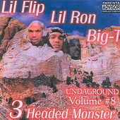 3 Headed Monster by Big T