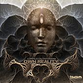 Own Reality By Psyorama by Various Artists