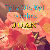Feliz Dia Del nombre Juan by Various Artists