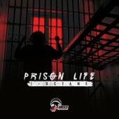 Prison Life - Single by I-Octane