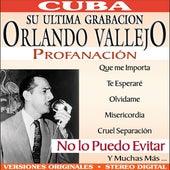 Profanacion by Orlando Vallejo