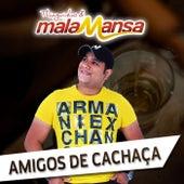 Amigos de Chacaça by Thiaguinho