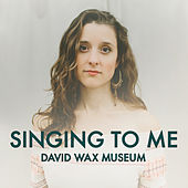 Singing to Me by David Wax Museum