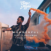 Wonderful by Casey Veggies