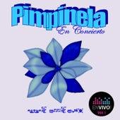 En Concierto, Vol. 1 (En Vivo) by Pimpinela
