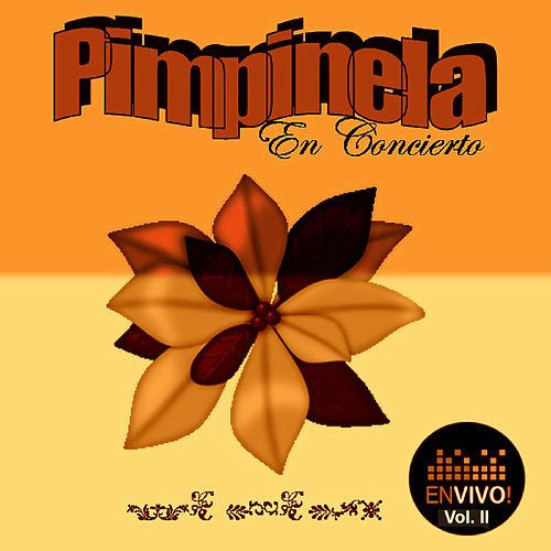 En Concierto, Vol. 2 (En Vivo) by Pimpinela