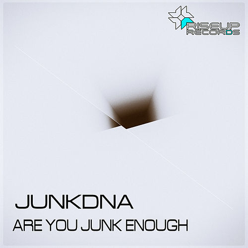 Are You Junk Enough by Junkdna