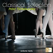 Classical Selection: Tchaikovsky by Various Artists