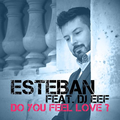 Do You Feel Love? (Mixes) by Esteban