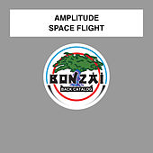 Space Flight by Amplitude