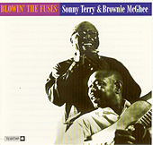 Blowin' The Fuses by Sonny Terry