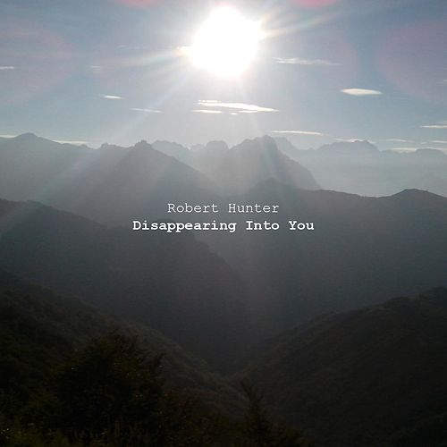Disappearing into You by Robert Hunter
