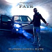 Haters Gonna Hate by F.A.T.E.