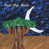 Sower Seed by Send Out Scuds