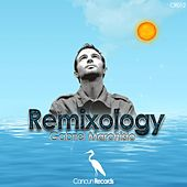 Remixology by Gabriel Marchisio