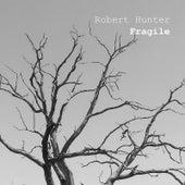 Fragile by Robert Hunter