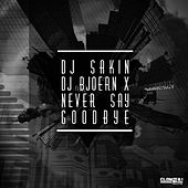 Never Say Goodbye by DJ Sakin