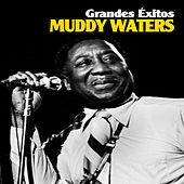 Grandes Éxitos by Muddy Waters