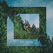 Fly Exam by Jgivens