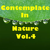 Contemplate In Nature, Vol.4 by Various Artists