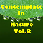Contemplate In Nature, Vol.8 by Various Artists