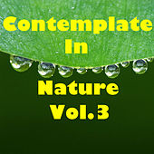 Contemplate In Nature, Vol.3 by Various Artists