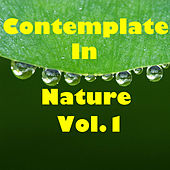Contemplate In Nature, Vol.1 by Various Artists