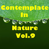 Contemplate In Nature, Vol.9 by Various Artists