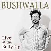 Live at the Belly Up by Bushwalla
