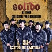 La Gran Coleccion Para Borrachos - 20 Exitos De Cantina by Various Artists