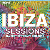Ibiza Sessions (The Best of Today's EDM Trax) by Various Artists