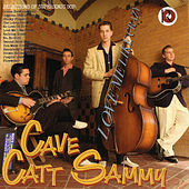 Love Me Like Crazy by Cave Catt Sammy