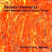 Bassoon Fireworks: Late Twentieth-Century Virtuoso Works - Sofia Gubaidulina, Lewis Neilsen, William Davis by Various Artists
