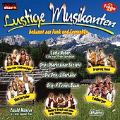 Lustige Musikanten Folge 2 by Various Artists