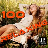 100 Relaxing by Fly 3 Project
