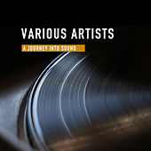 A Journey Into Sound von Various Artists